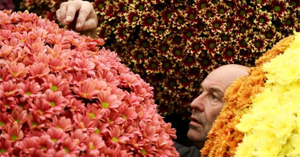 Chelsea In Bloom opens with 'Summer of Love'