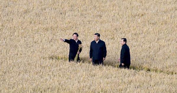 Chinese President Xi Jinping inspects Heilongjiang