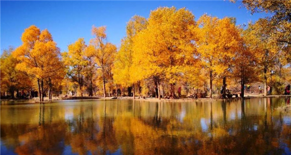 Autumn colors draw tourists to northwestern county