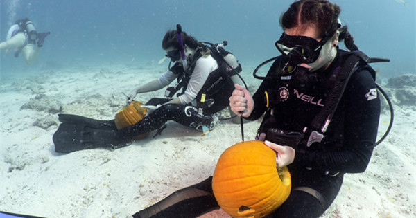 Divers show pumpkin carvings underwater