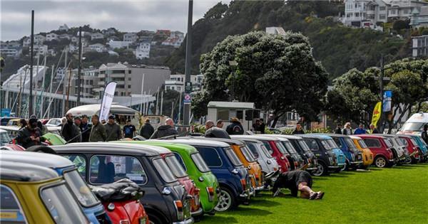 Over 120 BMW MINI Cooper vehicles displayed in Wellington