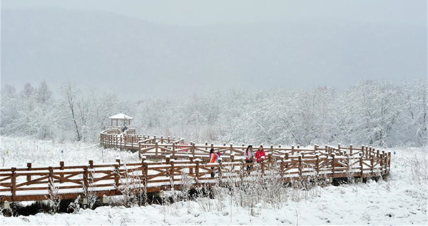 Snowfall hits Hulun Buir, N China
