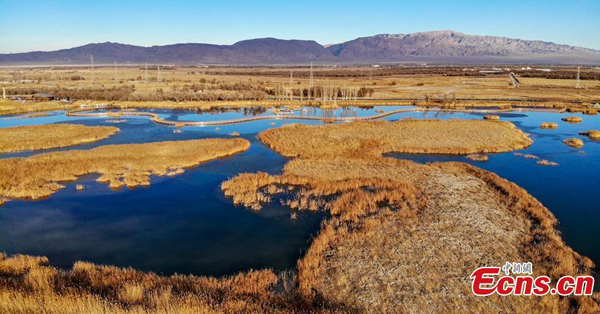 Beautiful scenery of Zhangye National Wetland Park