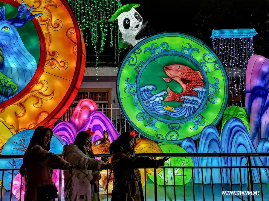 Lantern fair held in Zigong, southwest China