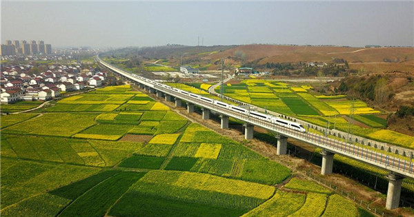 Bullet trains run through cole flower fields