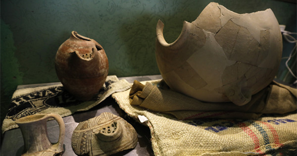 Israeli researchers brew 'ancient beer' with antique yeast