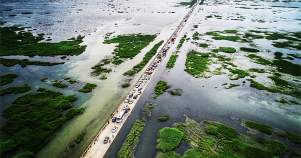 Walking along 'water' highway on Poyang Lake