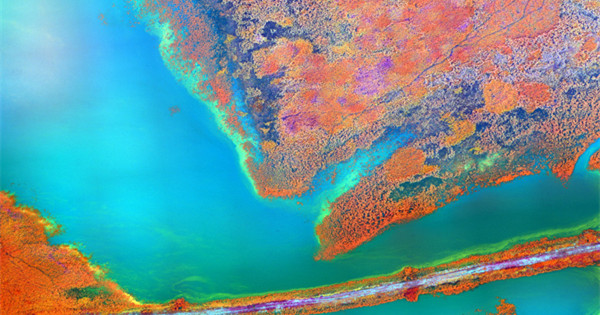 Infrared satellite photos show salt flats, rivers and glaciers in dazzling colours
