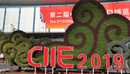 The Second China International Import Expo