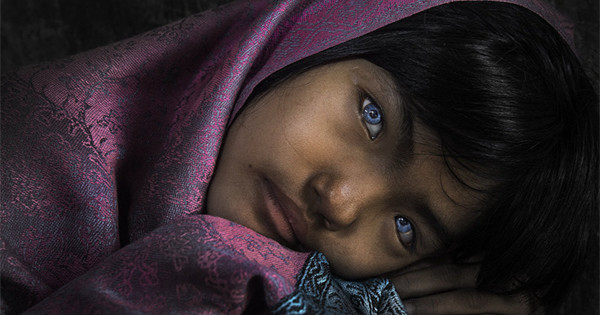 Stunning images make the finals of 'best photo of eyes' contest