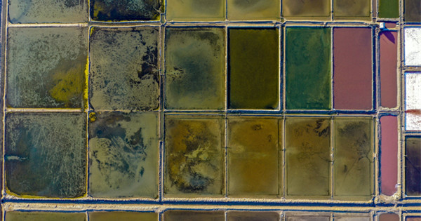 Aerial view of salt fields in Weihai, China's Shandong