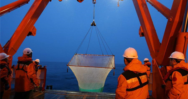 China's 36th Antarctic expedition team collect fish samples
