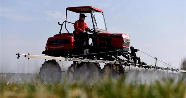 Farmers across China resume production