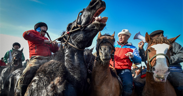 Kyrgyz riders compete in traditional horse game