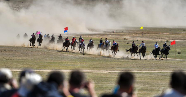 In pics: Horse racing on grass field in Xinjiang