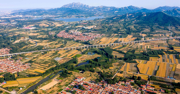 Aerial view of feilds in E China's Qingdao City