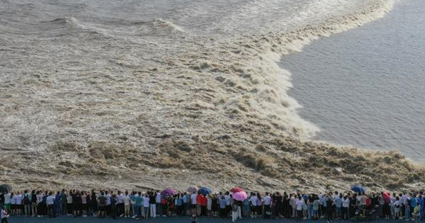 Visitors witness world��s largest tidal bore in E China's Qiantang River