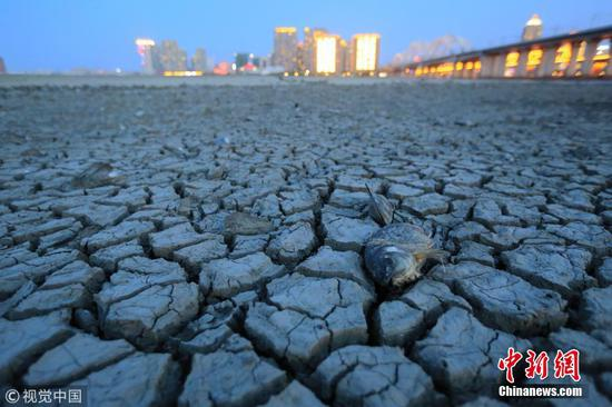 Songhua River in drought