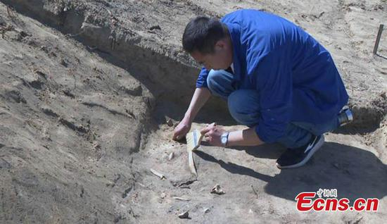 Tang Dynasty relics found in Xinjiang's Beiting ruins