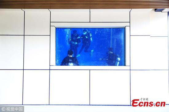 Woman builds 7-meter-deep diving pool in office building