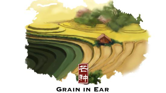 Grain in Ear: The season of plums and harvesting