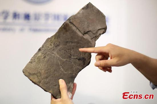 World's oldest animal footprints discovered in China