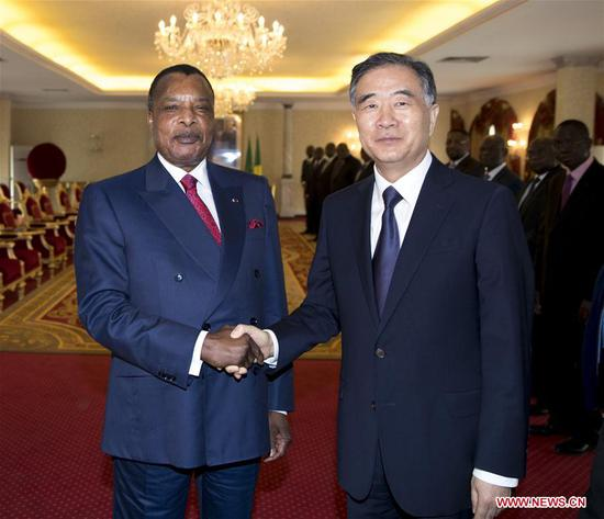 Wang Yang (R), chairman of the National Committee of the Chinese People's Political Consultative Conference, meets with Congolese President Denis Sassou Nguesso in Brazzaville, the Republic of Congo, June 13, 2018. At the invitation of Pierre Ngolo, president of the Senate of the Republic of Congo, Wang paid an official friendly visit to the African country from June 11 to 13. (Xinhua/Ding Haitao)