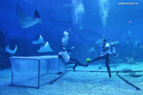 Divers play football underwater at ocean park in Shandong