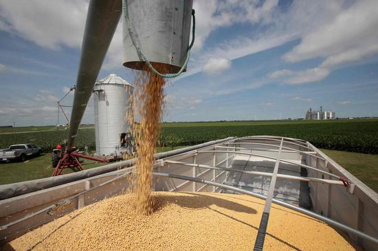 U.S. media: Trade tariffs put U.S. jobs, economy at stake
