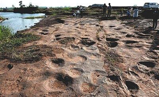 Footprints of dromaeosaurids were discovered in Tancheng County, East China's Shandong Province. (Photo/Beijing News)