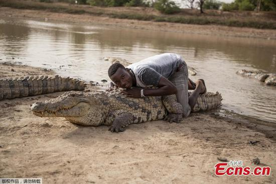 Villagers and crocodiles live side-by-side in African village