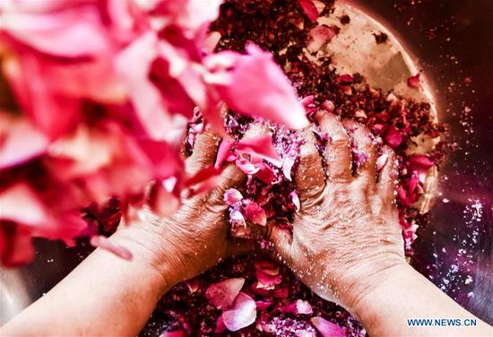 Hotan flower growers earn good income from making rose sauce