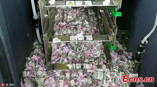 Mice destroy Rs 1.2 million at Indian ATM