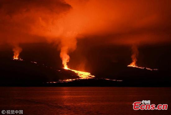 Galapagos' Sierra Negra volcano eruption triggers orange alert