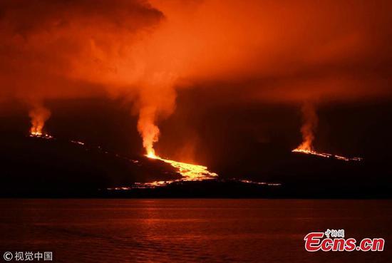 Galapagos' Sierra Negra volcano eruption triggers orange alert