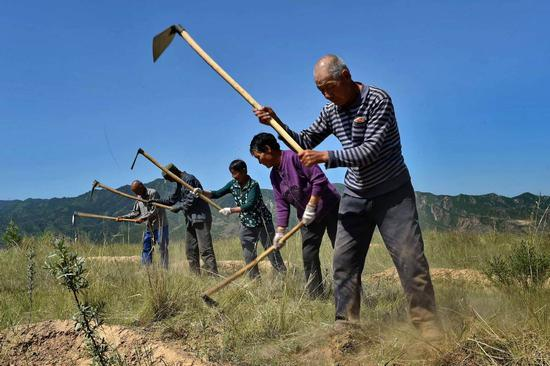 Villagers branching out to beat poverty