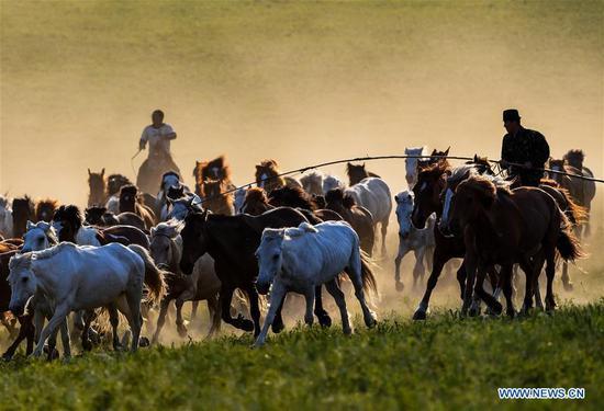 牧民在赤峰市的草原上骑马