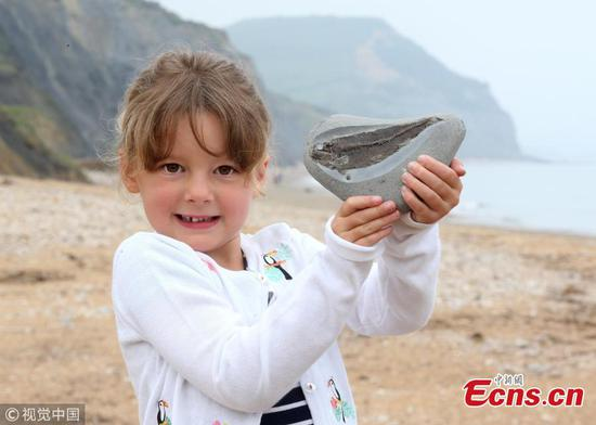 British girl, five, spots a rare fish fossil