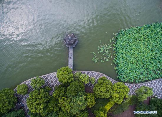 Summer scenery of West Lake in Hangzhou, east China