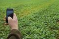 The smartphone - China's latest farming tool