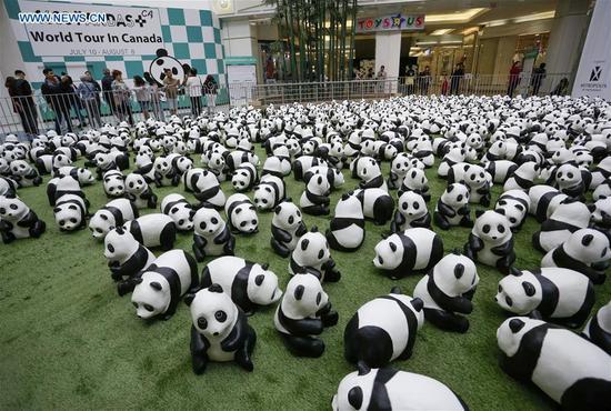 '1,600 Pandas' begins Canada exhibition tour in Vancouver