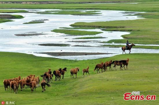 Best time to visit Hulun Buir grassland
