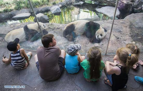 People visit Panda Passage at Calgary Zoo in Calgary, Canada