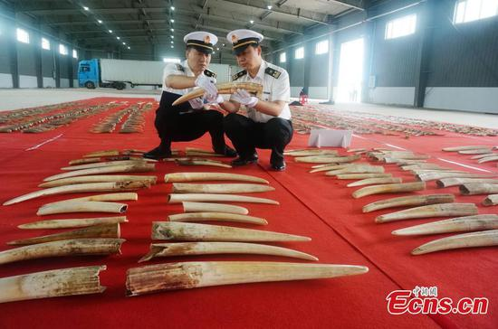 100 million yuan of endangered animal products seized in Harbin