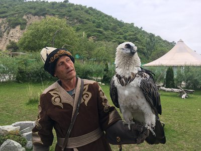 A breeder introduces his saker falcon during a demonstration at the Sunkar Falconry Center in Almaty, Kazakhstan. (Photo: Chen Rui/GT)