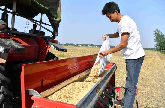 A farmer sows soybeans with a machine in Woyang county, Anhui province, last month. (LIU QINLI/FOR CHINA DAILY)