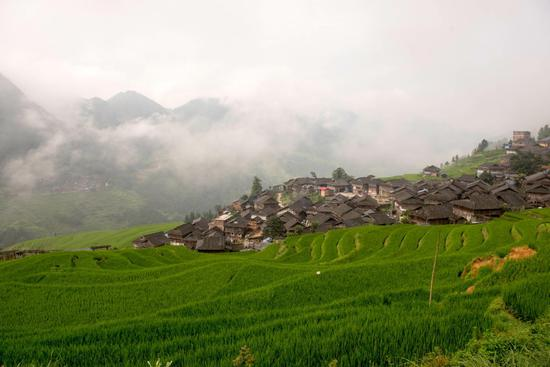 Refreshing summer scene of Jiabang terraced fields in Guizhou Province