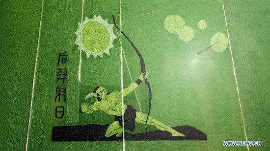 Rice paddy art pictures shown in Anhui