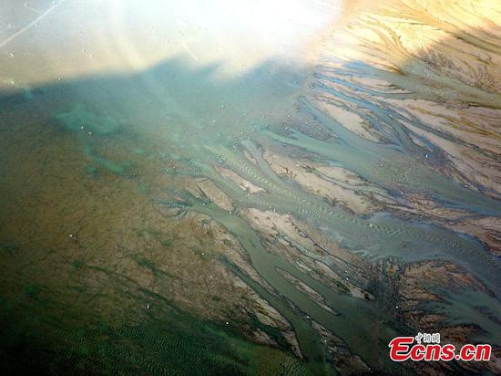 黄河画似河床