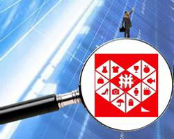 Market regulators investigate alleged fake products on Pinduoduo